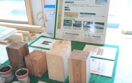 パッシブソーラーの家 構造見学会を開催しました!